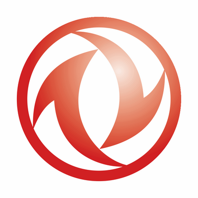 Логотип DFM