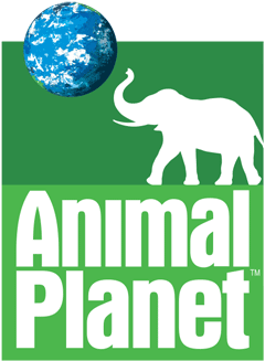Animal Planet, 1996-2008
